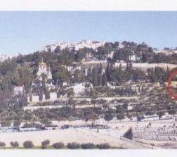 Il Getsemani