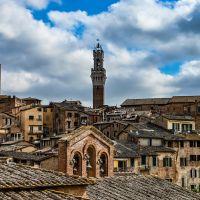 La Foto della Settimana  Siena