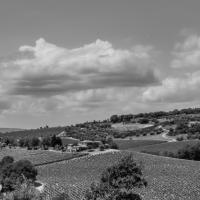 La foto della Settimana Campagna Toscana